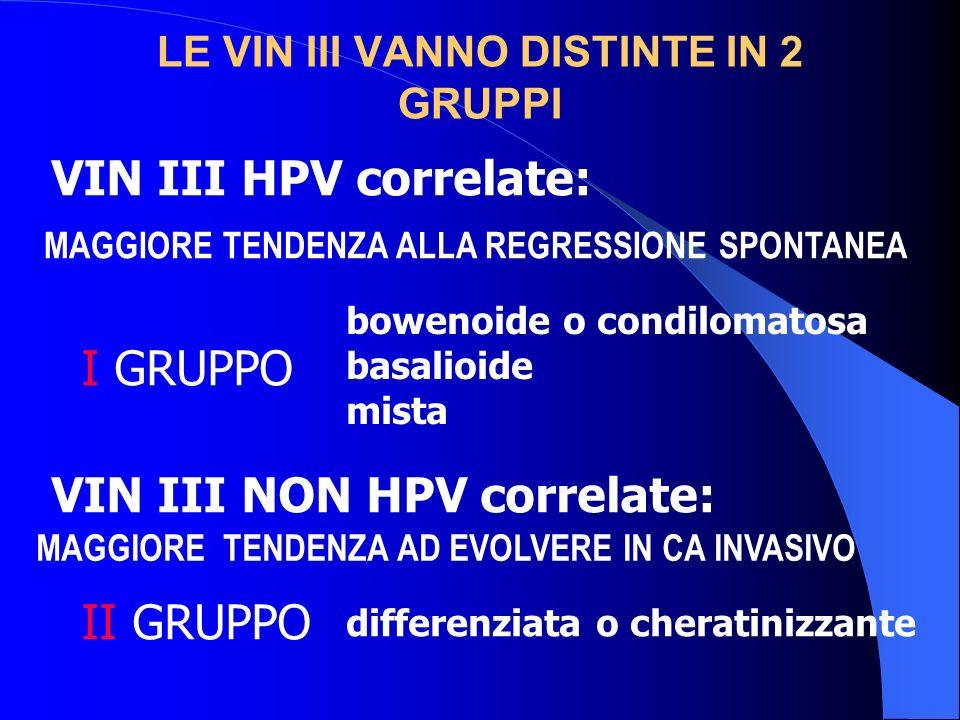LE VIN III VANNO DISTINTE IN 2 GRUPPI VIN III HPV correlate: I GRUPPO VIN III NON HPV correlate: II GRUPPO bowenoide o condilomatosa basalioide mista