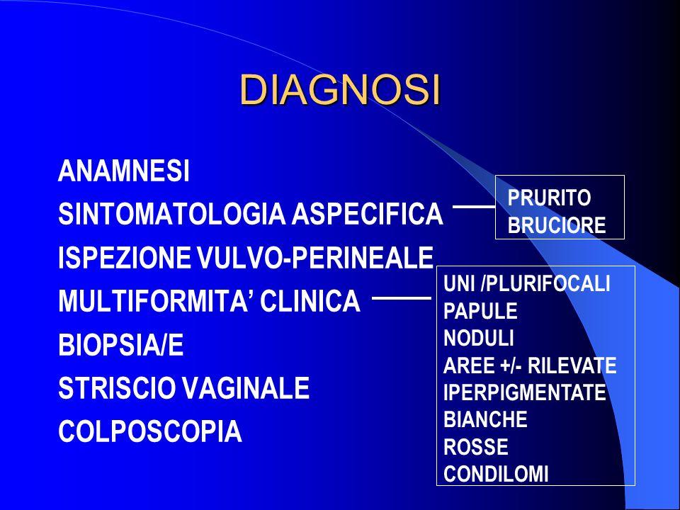 DIAGNOSI ANAMNESI SINTOMATOLOGIA ASPECIFICA ISPEZIONE VULVO-PERINEALE MULTIFORMITA CLINICA BIOPSIA/E STRISCIO VAGINALE COLPOSCOPIA PRURITO BRUCIORE UN