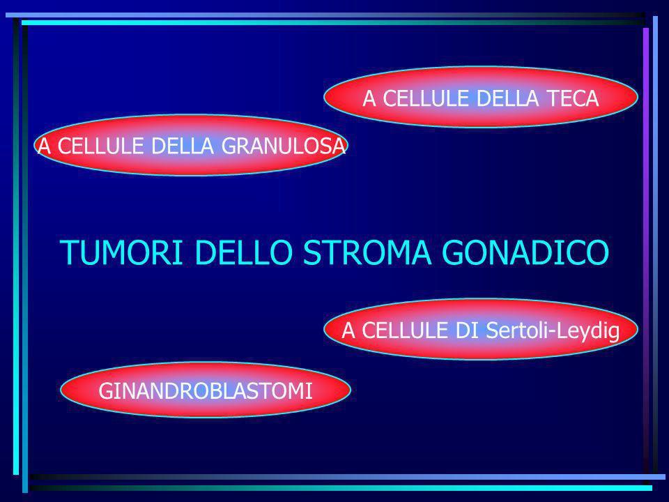 TUMORI DELLO STROMA GONADICO A CELLULE DELLA GRANULOSA A CELLULE DELLA TECA A CELLULE DI Sertoli-Leydig GINANDROBLASTOMI