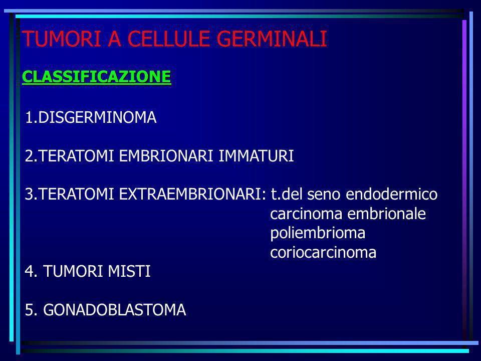TUMORI A CELLULE GERMINALI CLASSIFICAZIONE 1.DISGERMINOMA 2.TERATOMI EMBRIONARI IMMATURI 3.TERATOMI EXTRAEMBRIONARI: t.del seno endodermico carcinoma