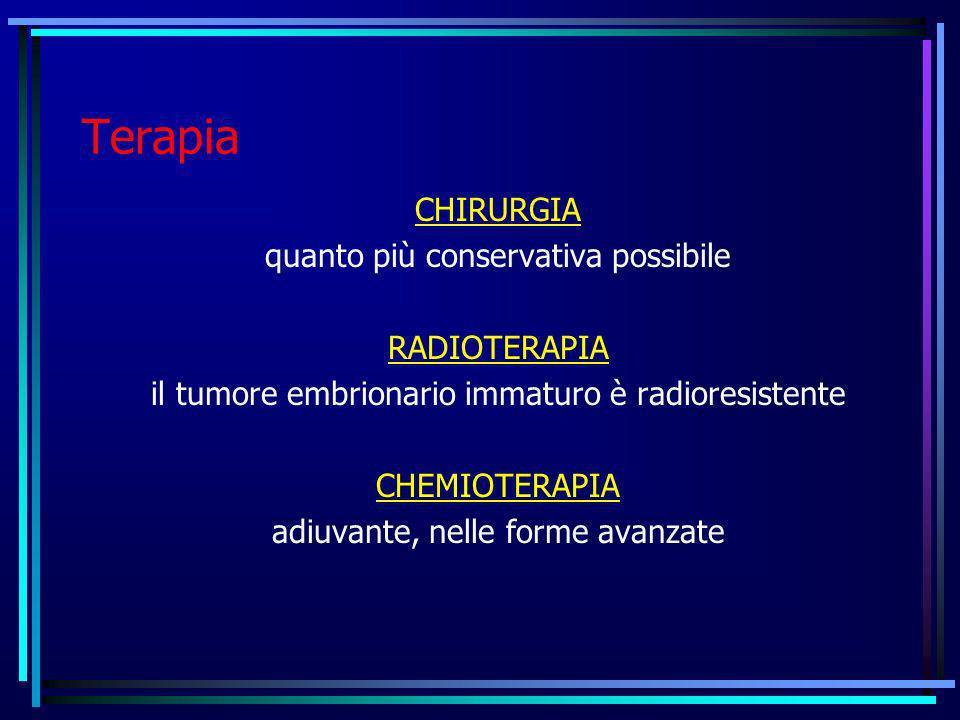 Terapia CHIRURGIA quanto più conservativa possibile RADIOTERAPIA il tumore embrionario immaturo è radioresistente CHEMIOTERAPIA adiuvante, nelle forme