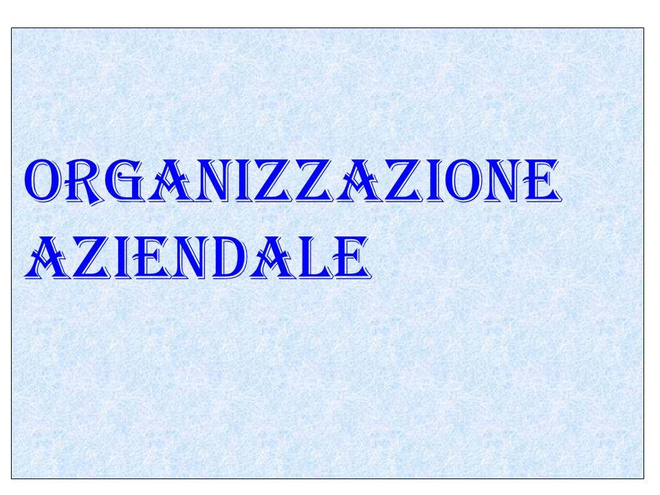 Lazienda Se consideriamo ora una azienda, cioè l insieme dei beni che servono all imprenditore per la sua impresa, anche una azienda deve essere organizzata; per cui l organizzazione aziendale sarebbe l insieme dei componenti che rendono possibile il funzionamento di una azienda.