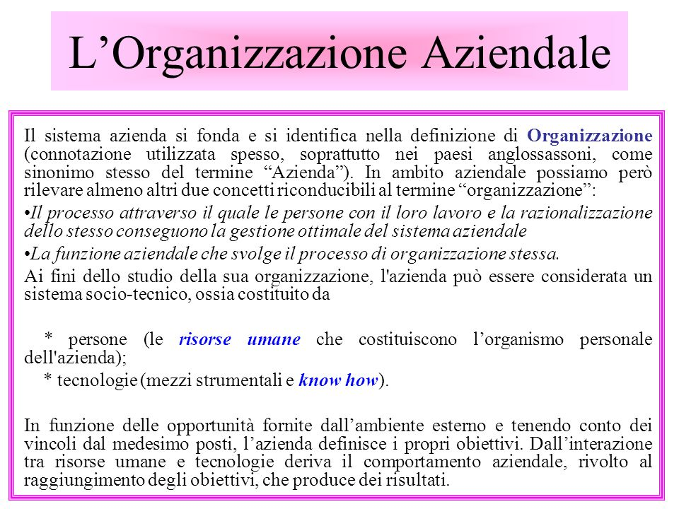 LOrganizzazione Aziendale Il sistema azienda si fonda e si identifica nella definizione di Organizzazione (connotazione utilizzata spesso, soprattutto