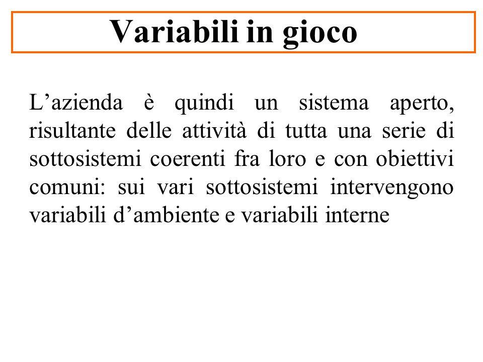 Variabili in gioco Lazienda è quindi un sistema aperto, risultante delle attività di tutta una serie di sottosistemi coerenti fra loro e con obiettivi