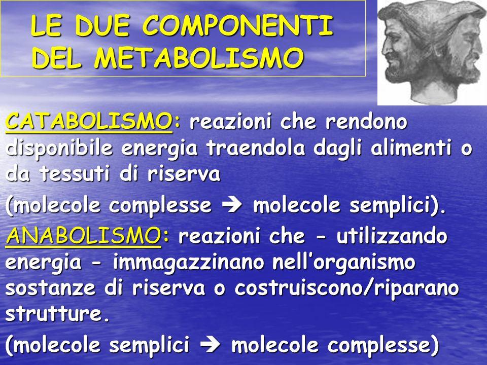 LE DUE COMPONENTI DEL METABOLISMO CATABOLISMO: reazioni che rendono disponibile energia traendola dagli alimenti o da tessuti di riserva (molecole complesse molecole semplici).