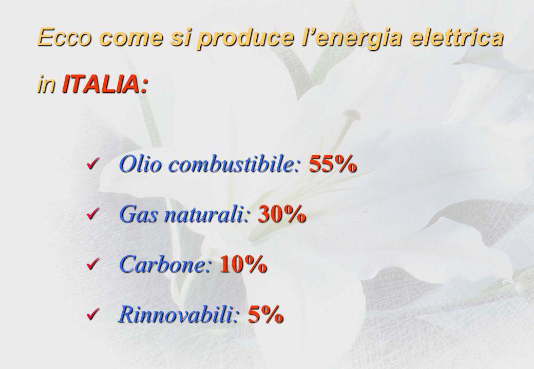 Produzione dellEnergia elettrica con Fonti rinnovabili !.