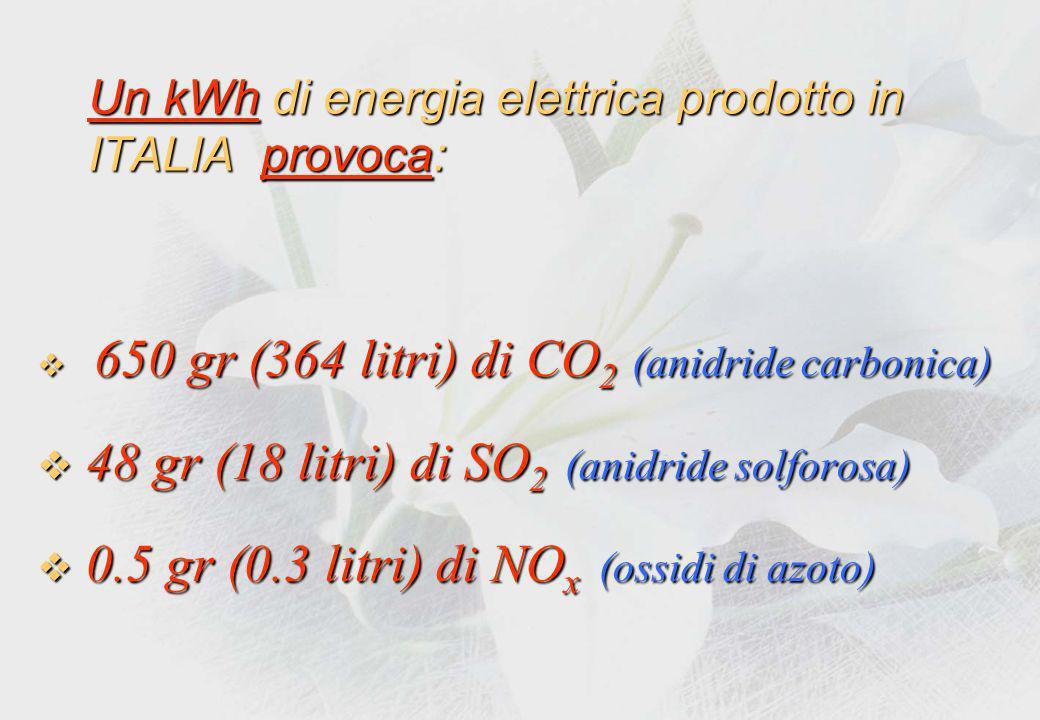 Ecco come si produce lenergia elettrica in ITALIA: Olio combustibile:55% Olio combustibile: 55% Gas naturali: 30% Gas naturali: 30% Carbone:10% Carbone: 10% Rinnovabili:5% Rinnovabili: 5%