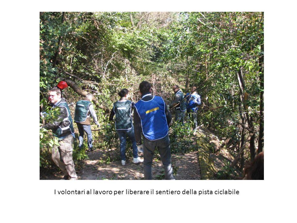 I volontari al lavoro per liberare il sentiero della pista ciclabile