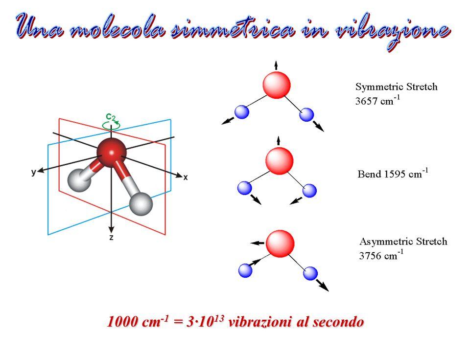1000 cm -1 = 3·10 13 vibrazioni al secondo