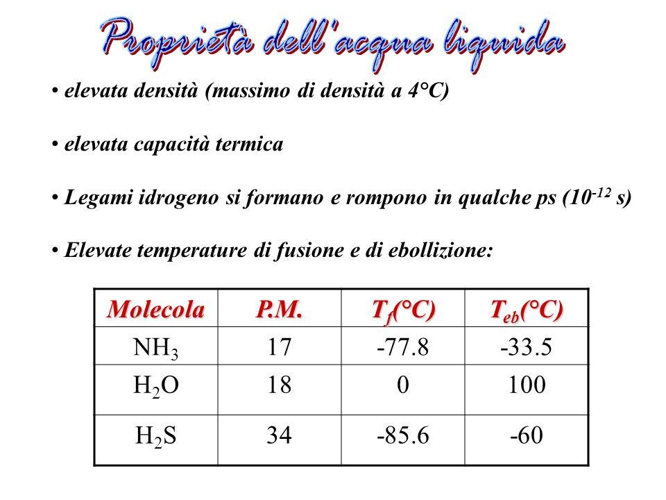 elevata densità (massimo di densità a 4°C) elevata capacità termica Legami idrogeno si formano e rompono in qualche ps (10 -12 s) Elevate temperature