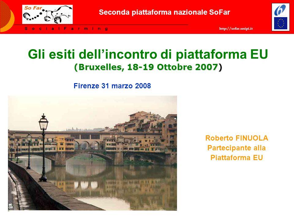 http://sofar.unipi.it Seconda piattaforma nazionale SoFar (Bruxelles, 18-19 Ottobre 2007) Gli esiti dellincontro di piattaforma EU (Bruxelles, 18-19 O