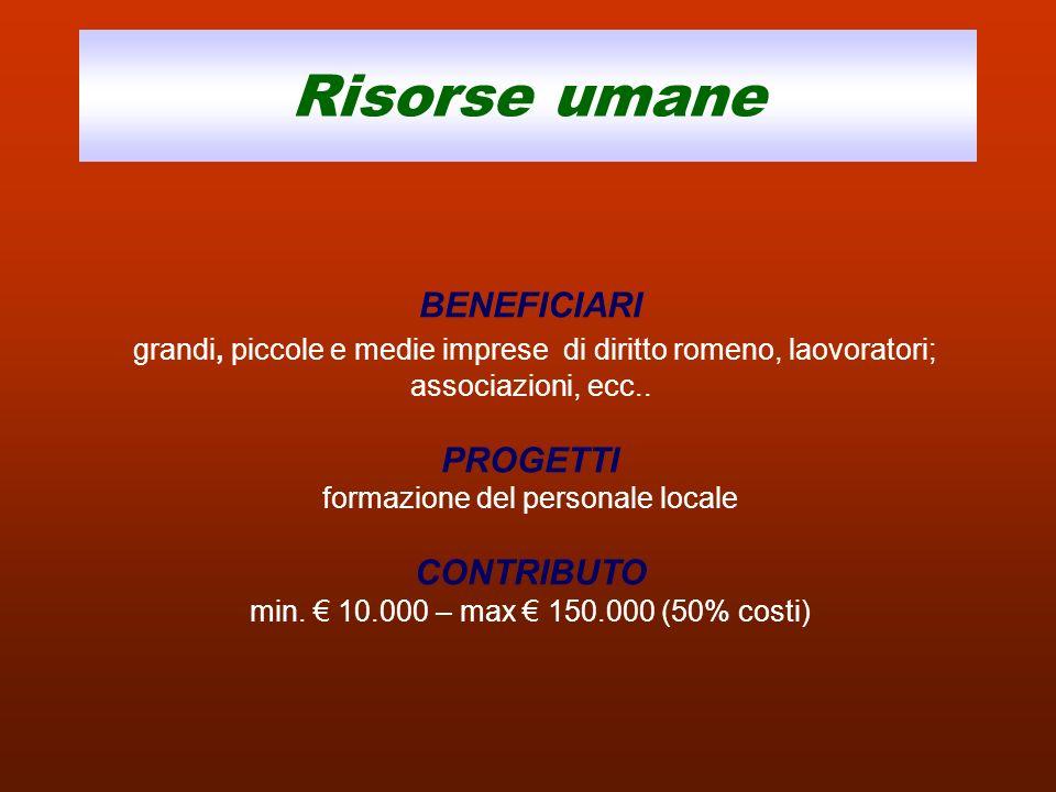 Risorse umane BENEFICIARI grandi, piccole e medie imprese di diritto romeno, laovoratori; associazioni, ecc.. PROGETTI formazione del personale locale