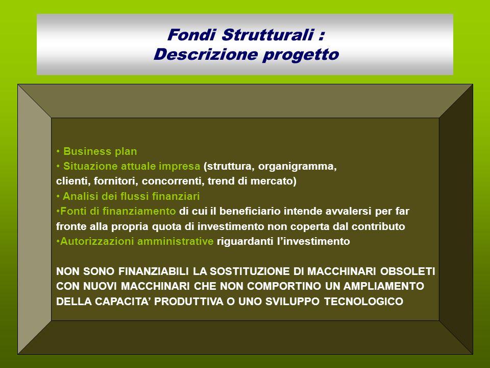 Business plan Situazione attuale impresa (struttura, organigramma, clienti, fornitori, concorrenti, trend di mercato) Analisi dei flussi finanziari Fo