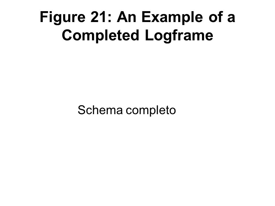 Figure 21: An Example of a Completed Logframe Schema completo