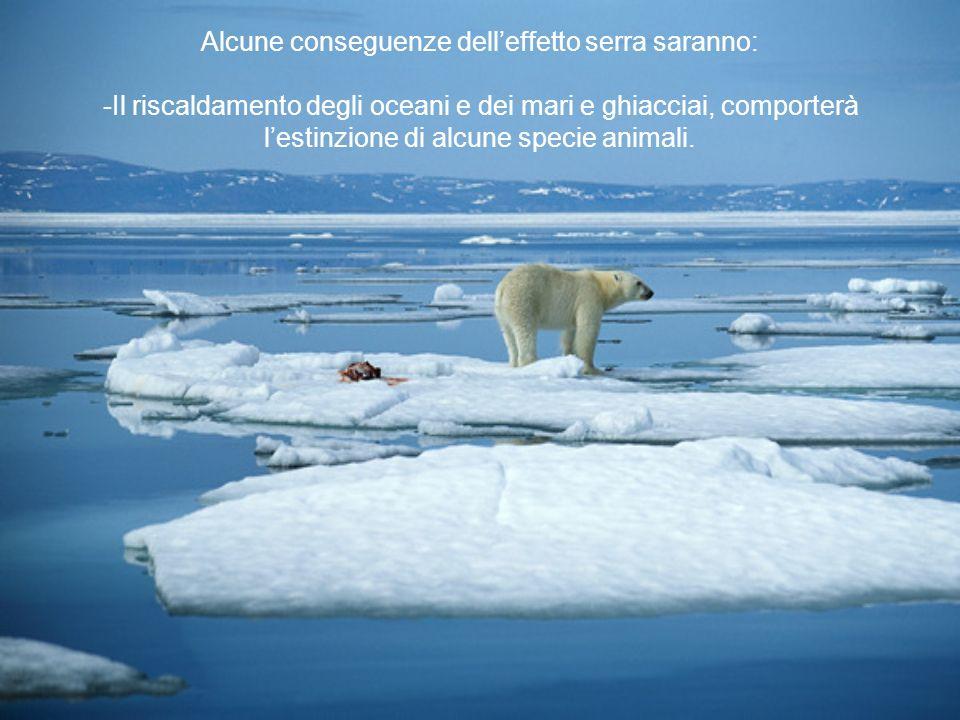 Alcune conseguenze delleffetto serra saranno: -Il riscaldamento degli oceani e dei mari e ghiacciai, comporterà lestinzione di alcune specie animali.