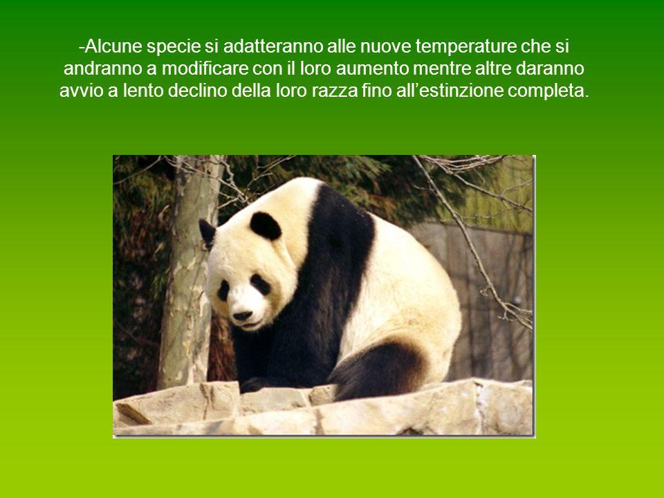 -Alcune specie si adatteranno alle nuove temperature che si andranno a modificare con il loro aumento mentre altre daranno avvio a lento declino della