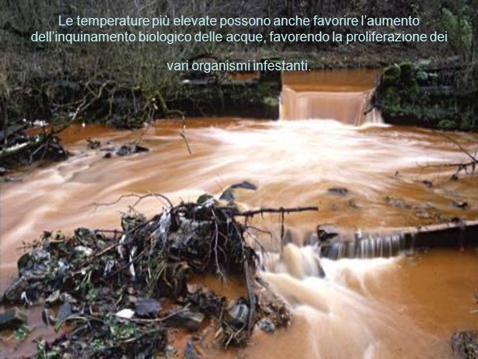 Le temperature più elevate possono anche favorire laumento dellinquinamento biologico delle acque, favorendo la proliferazione dei vari organismi infe