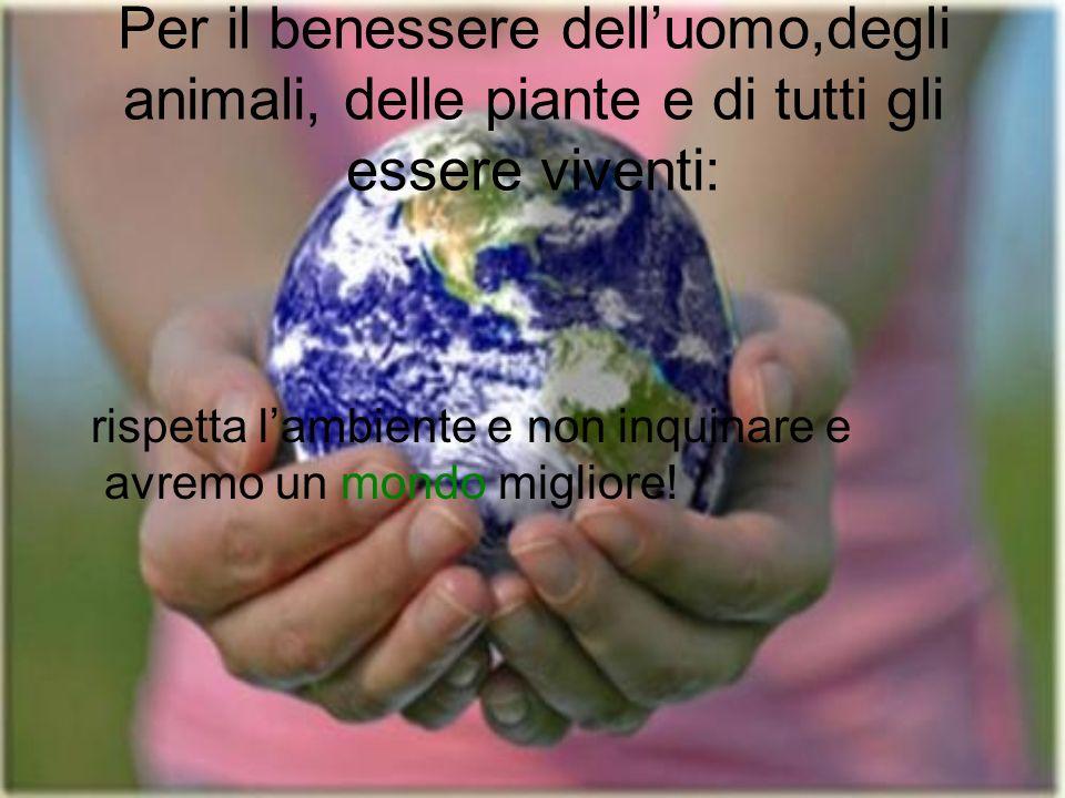 Per il benessere delluomo,degli animali, delle piante e di tutti gli essere viventi: rispetta lambiente e non inquinare e avremo un mondo migliore!