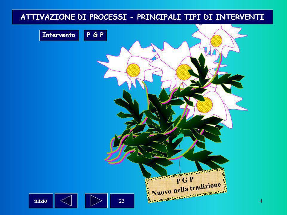 4 P G P Nuovo nella tradizione ATTIVAZIONE DI PROCESSI - PRINCIPALI TIPI DI INTERVENTI InterventoP G P 23inizio