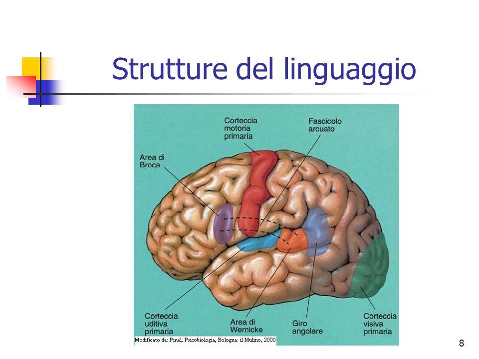 8 Strutture del linguaggio