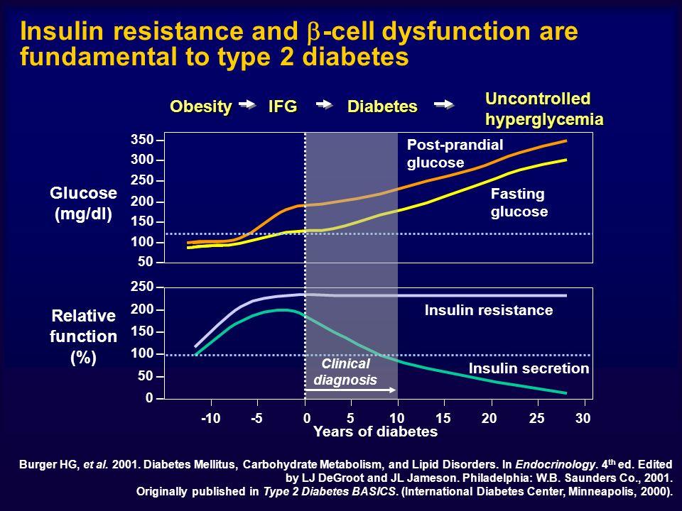Glucose (mg/dl) 50 – 100 – 150 – 200 – 250 – 300 – 350 – 0 – 50 – 100 – 150 – 200 – 250 – -10-5051015202530 Years of diabetes Burger HG, et al.