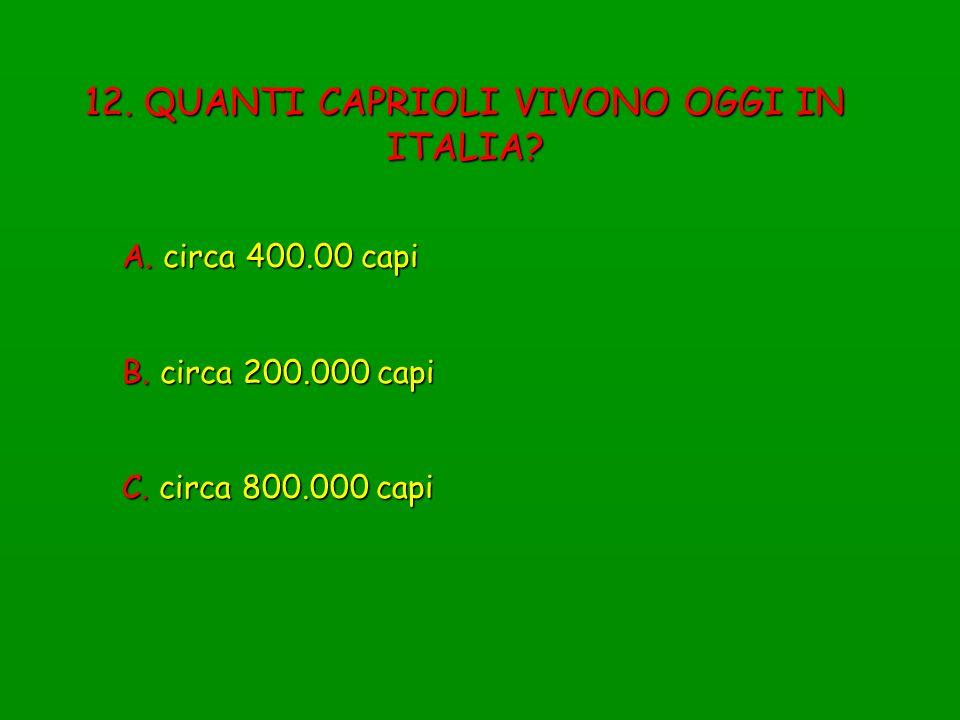 12. QUANTI CAPRIOLI VIVONO OGGI IN ITALIA? A. circa 400.00 capi B. circa 200.000 capi C. circa 800.000 capi