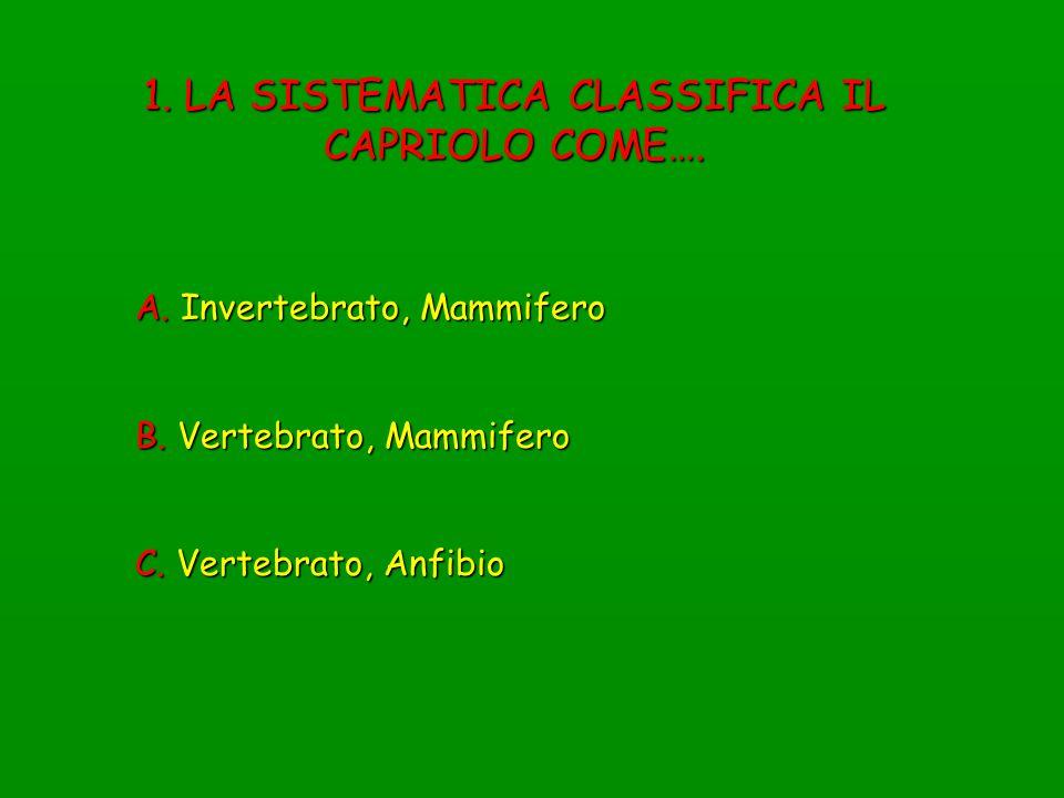 1. LA SISTEMATICA CLASSIFICA IL CAPRIOLO COME…. A. Invertebrato, Mammifero B. Vertebrato, Mammifero C. Vertebrato, Anfibio