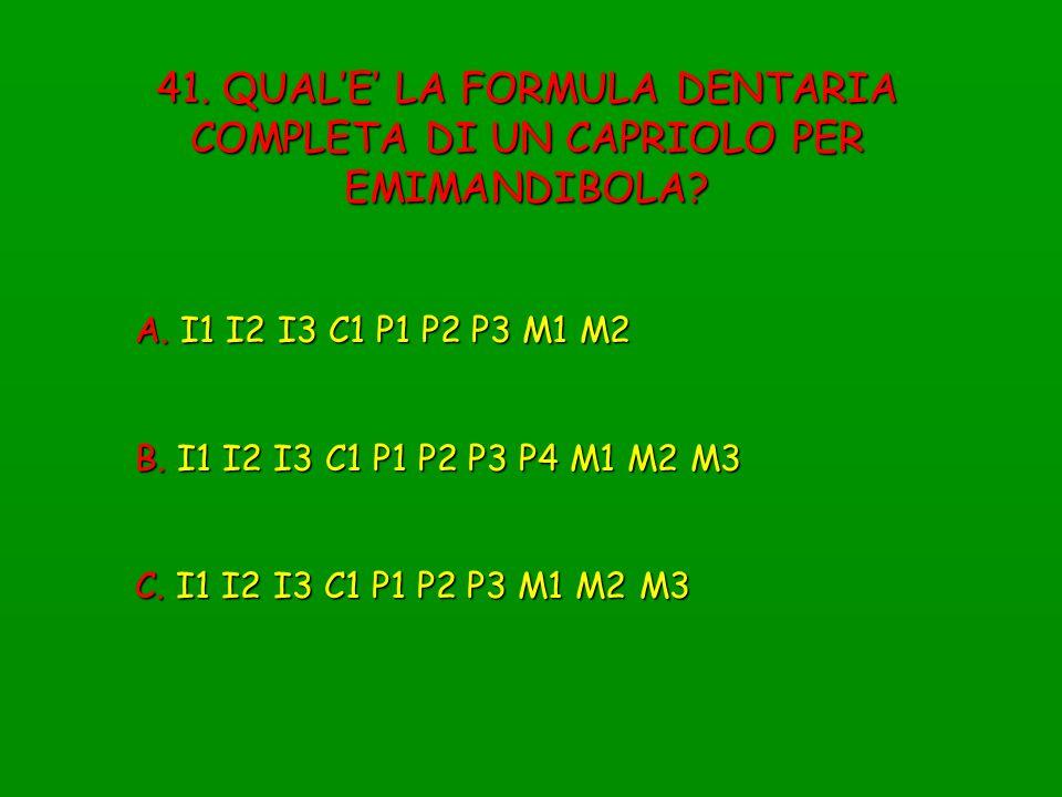 41. QUALE LA FORMULA DENTARIA COMPLETA DI UN CAPRIOLO PER EMIMANDIBOLA? A. I1 I2 I3 C1 P1 P2 P3 M1 M2 B. I1 I2 I3 C1 P1 P2 P3 P4 M1 M2 M3 C. I1 I2 I3