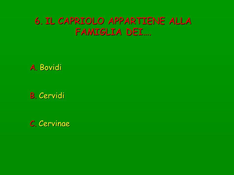 7.APPARTENGONO ALLA FAMIGLIA DEI CERVIDI ANIMALI CHE….