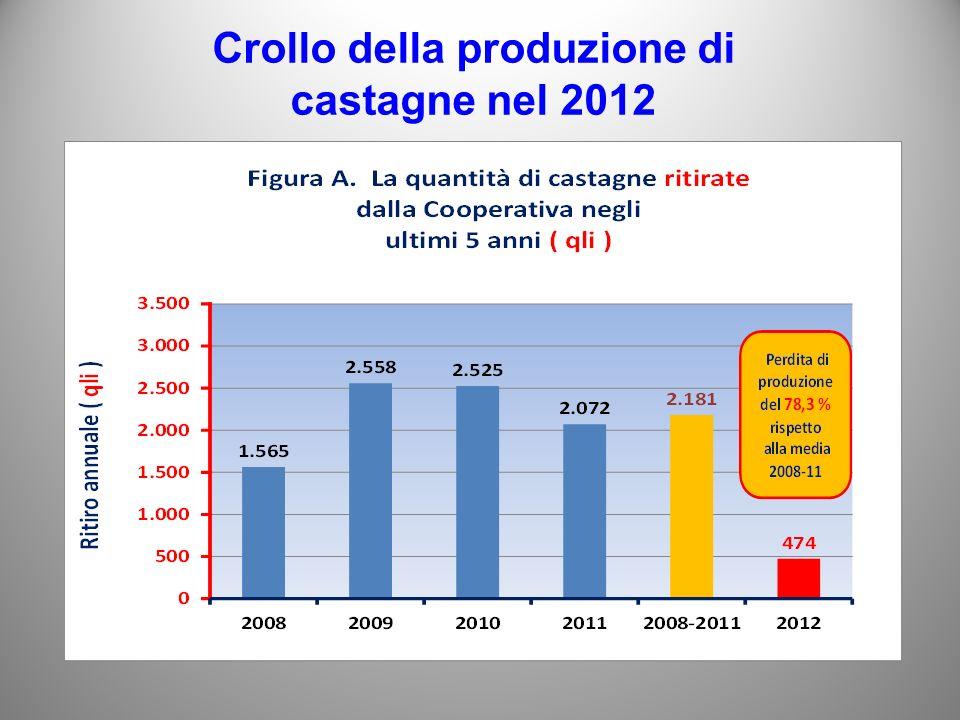 Crollo della produzione di castagne nel 2012