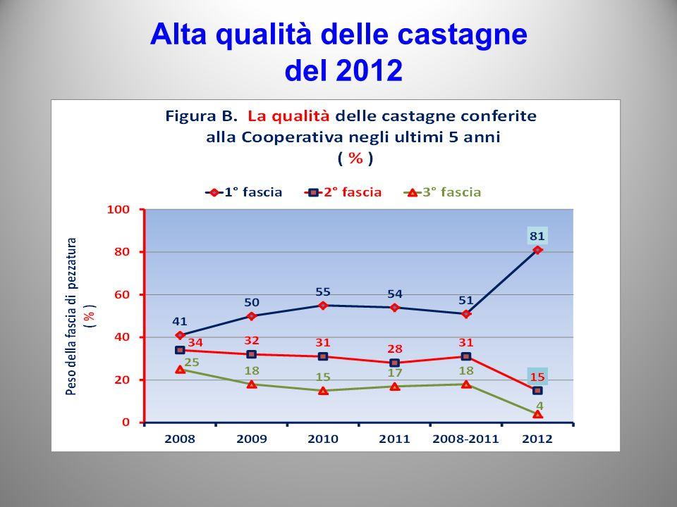 Alta qualità delle castagne del 2012