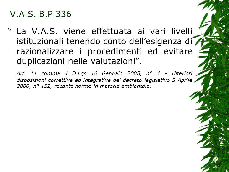 La V.A.S. viene effettuata ai vari livelli istituzionali tenendo conto dellesigenza di razionalizzare i procedimenti ed evitare duplicazioni nelle val