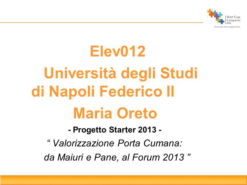 Elev012 Università degli Studi di Napoli Federico II Maria Oreto - Progetto Starter 2013 - Valorizzazione Porta Cumana: da Maiuri e Pane, al Forum 201