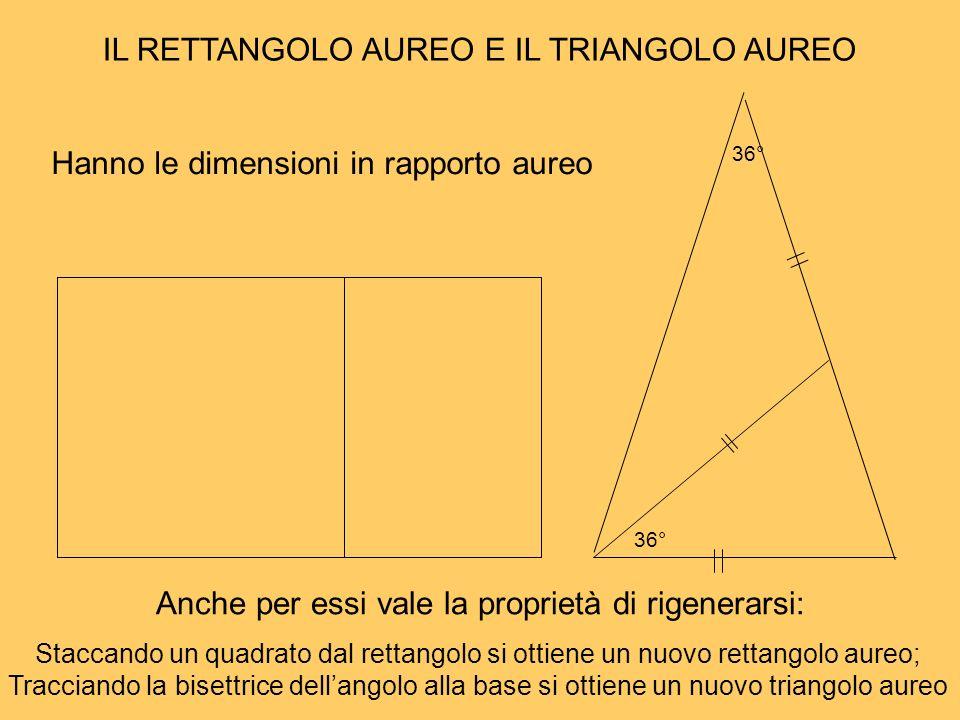 IL RETTANGOLO AUREO E IL TRIANGOLO AUREO Hanno le dimensioni in rapporto aureo Anche per essi vale la proprietà di rigenerarsi: 36° Staccando un quadr
