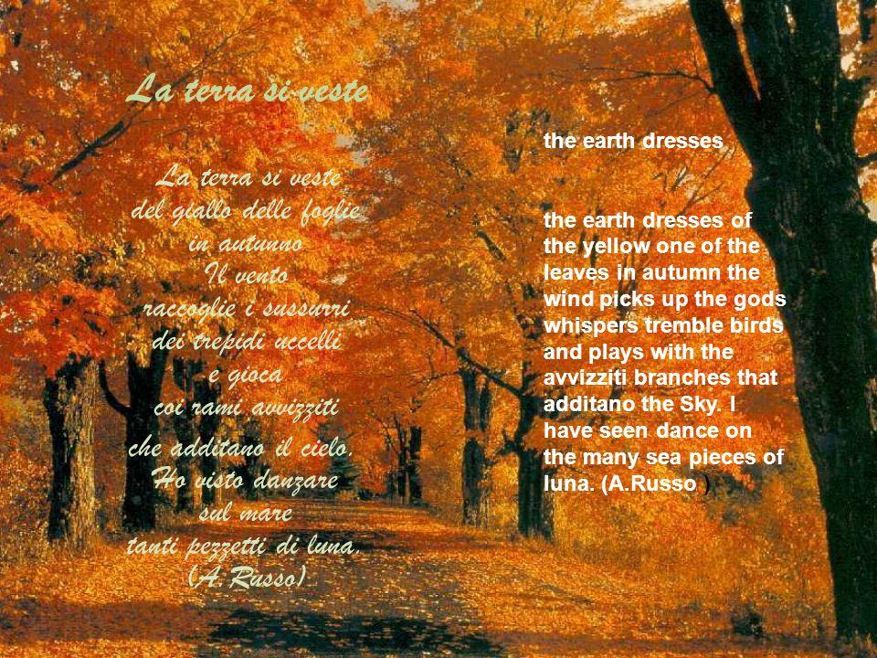 La terra si veste La terra si veste del giallo delle foglie in autunno Il vento raccoglie i sussurri dei trepidi uccelli e gioca coi rami avvizziti ch