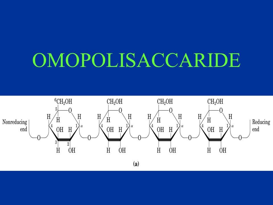 OMOPOLISACCARIDE