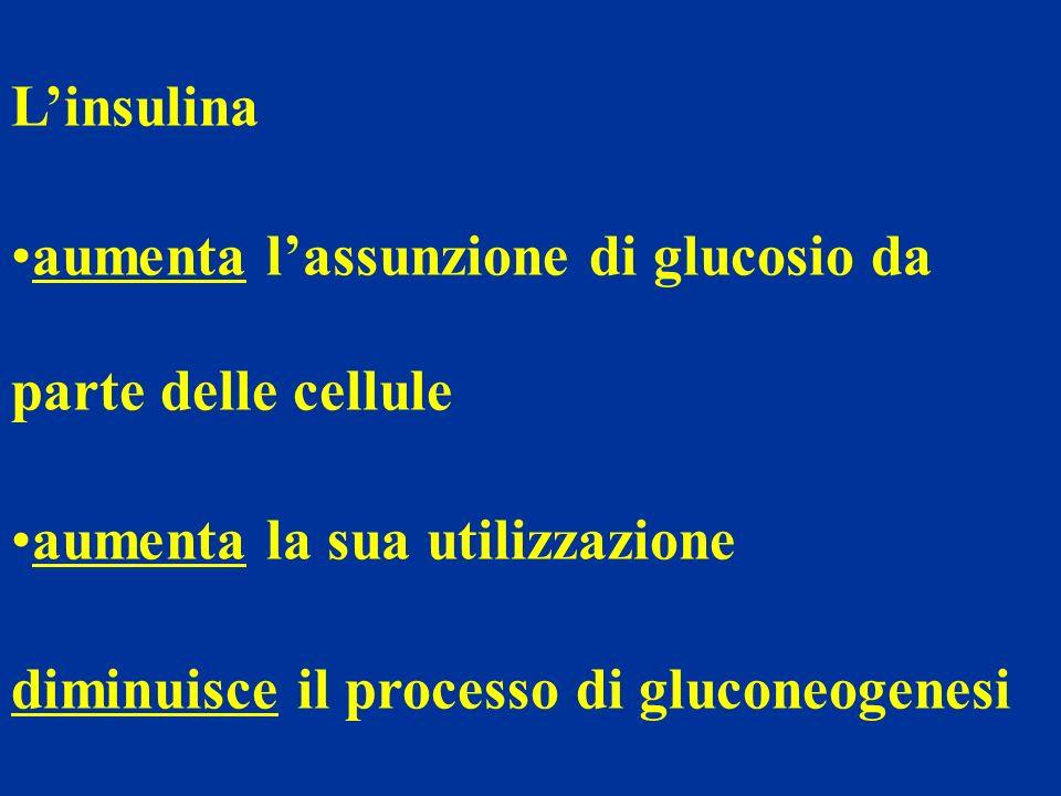 Linsulina aumenta lassunzione di glucosio da parte delle cellule aumenta la sua utilizzazione diminuisce il processo di gluconeogenesi
