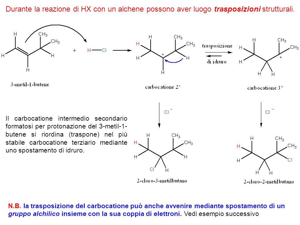 Quali prodotti sono sintetizzati dalla reazione fra lHBr e il 3,3-dimetilbutene.