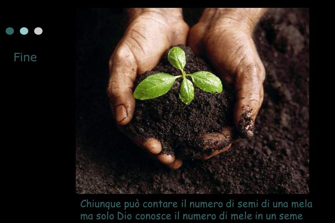 Chiunque può contare il numero di semi di una mela ma solo Dio conosce il numero di mele in un seme Fine