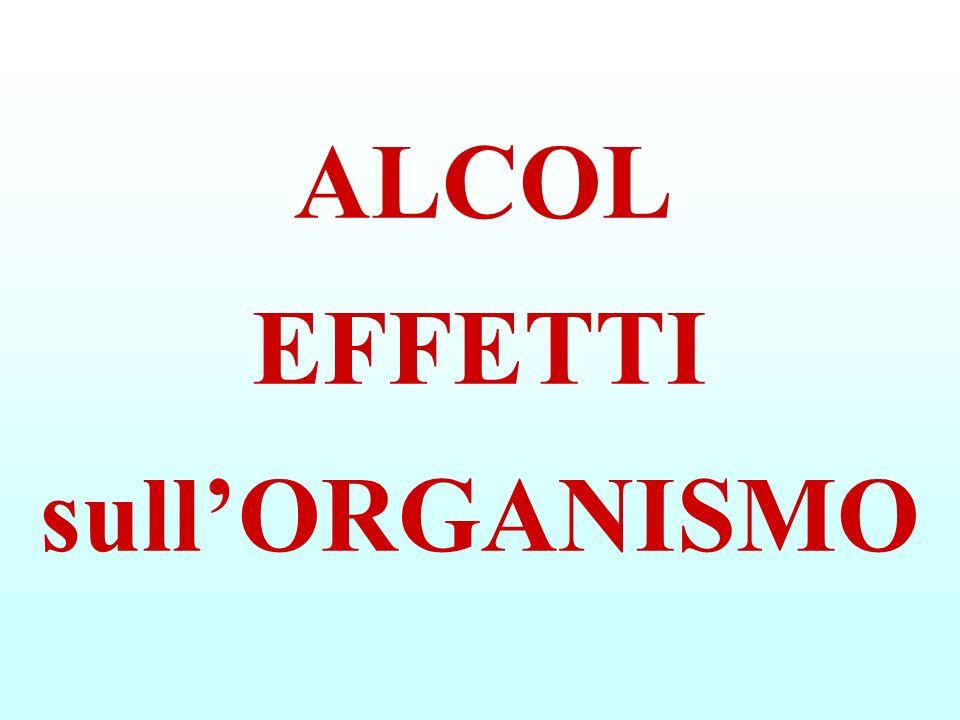 ALCOL EFFETTI sullORGANISMO
