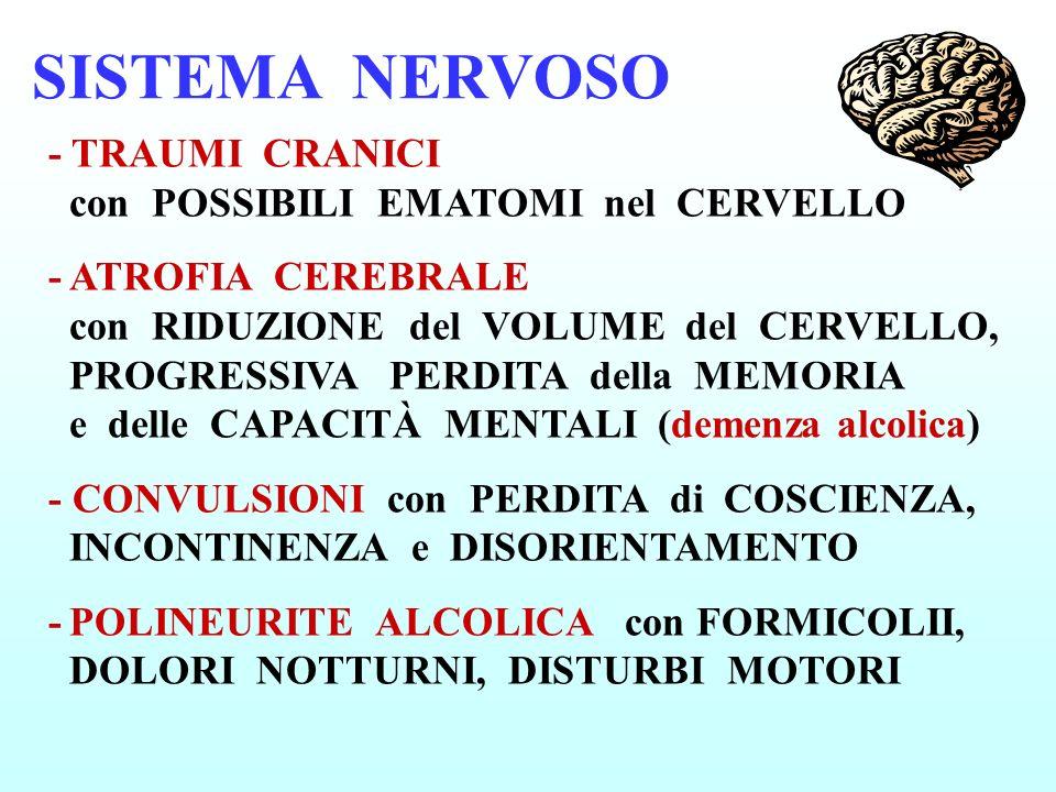 SISTEMA NERVOSO - TRAUMI CRANICI con POSSIBILI EMATOMI nel CERVELLO -ATROFIA CEREBRALE con RIDUZIONE del VOLUME del CERVELLO, PROGRESSIVA PERDITA dell