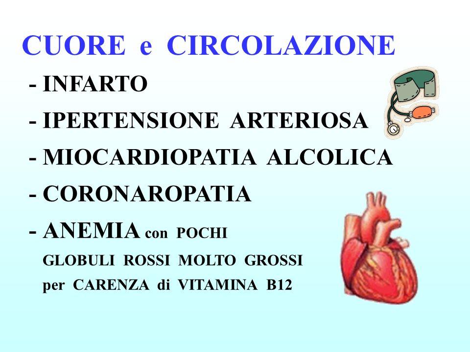 CUORE e CIRCOLAZIONE -INFARTO - IPERTENSIONE ARTERIOSA - MIOCARDIOPATIA ALCOLICA - CORONAROPATIA -ANEMIA con POCHI GLOBULI ROSSI MOLTO GROSSI per CARE