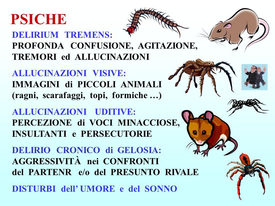 PSICHE DELIRIUM TREMENS: PROFONDA CONFUSIONE, AGITAZIONE, TREMORI ed ALLUCINAZIONI ALLUCINAZIONI VISIVE: IMMAGINI di PICCOLI ANIMALI (ragni, scarafagg
