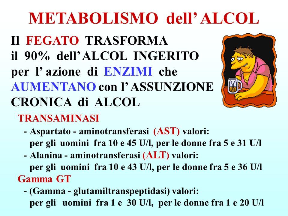 -SOSTANZE TOSSICHE (acetaldeide, acido acetico ecc.) -ACCUMULO di TRIGLICERIDI (grassi) nel fegato (STEATOSI EPATICA) -ACCUMULO di COMPOSTI ACIDI (acido lattico ed altri) -CALORIE con AUMENTO di GRASSI nei TESSUTI e possibile OBESITÀ, sostituzione delle calorie degli alimenti con quelle inutili dell alcol -SENSO di SAZIETÀ che induce a TRASCURARE l ALIMENTAZIONE con CARENZA di SOSTANZE NUTRITIVE e VITAMINE -ESAURIMENTO delle scorte di ZUCCHERI -RIDUZIONE dell ELIMINAZIONE dell ACIDO URICO (gotta) L ALCOL nel FEGATO PRODUCE: