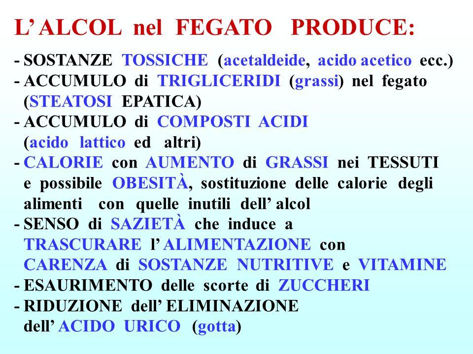 -SOSTANZE TOSSICHE (acetaldeide, acido acetico ecc.) -ACCUMULO di TRIGLICERIDI (grassi) nel fegato (STEATOSI EPATICA) -ACCUMULO di COMPOSTI ACIDI (aci