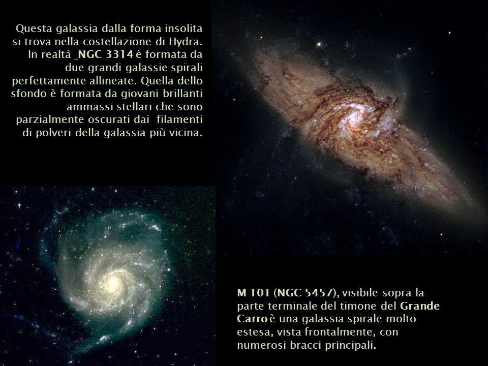 M 101 (NGC 5457), visibile sopra la parte terminale del timone del Grande Carro è una galassia spirale molto estesa, vista frontalmente, con numerosi