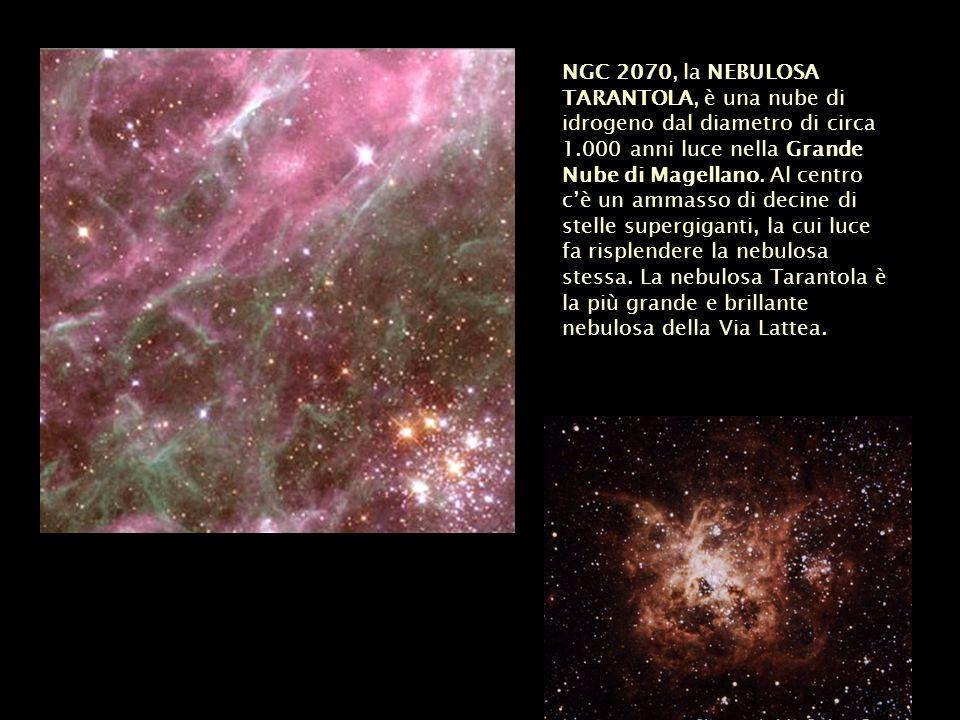NGC 2070, la NEBULOSA TARANTOLA, è una nube di idrogeno dal diametro di circa 1.000 anni luce nella Grande Nube di Magellano. Al centro cè un ammasso