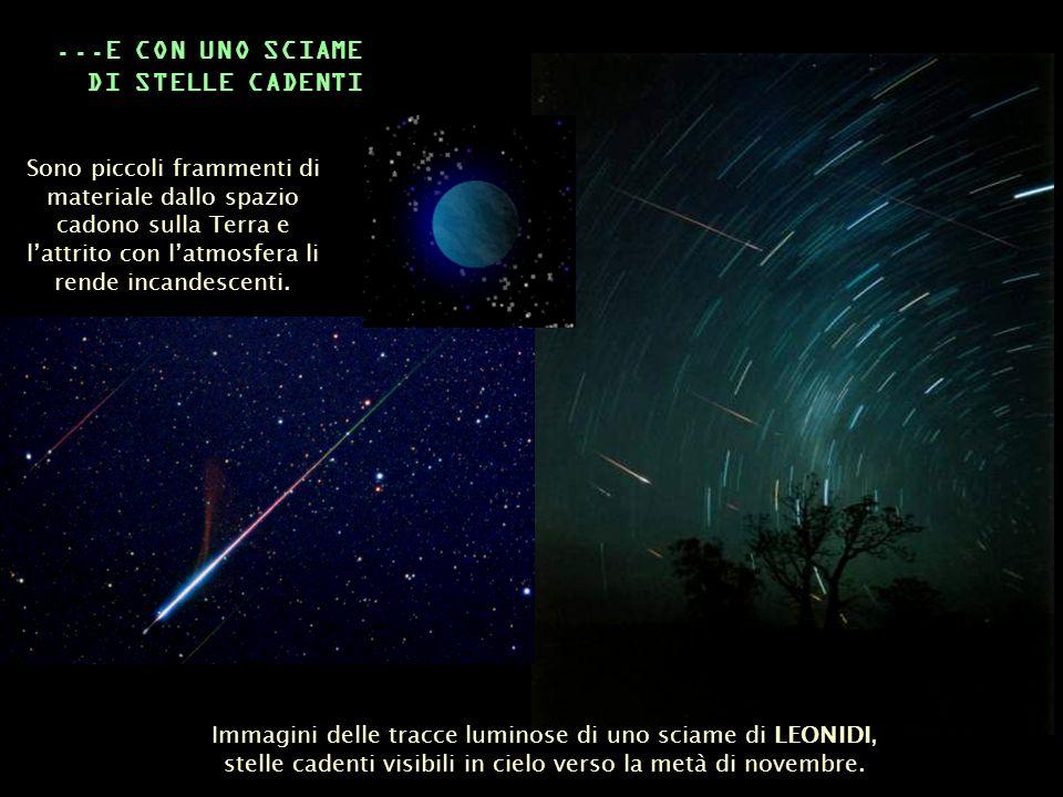 Immagini delle tracce luminose di uno sciame di LEONIDI, stelle cadenti visibili in cielo verso la metà di novembre....E CON UNO SCIAME DI STELLE CADE