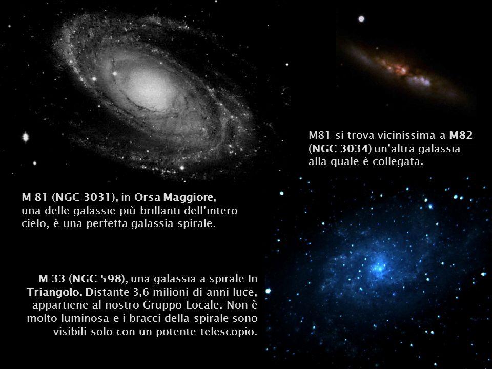 M 81 (NGC 3031), in Orsa Maggiore, una delle galassie più brillanti dellintero cielo, è una perfetta galassia spirale. M81 si trova vicinissima a M82