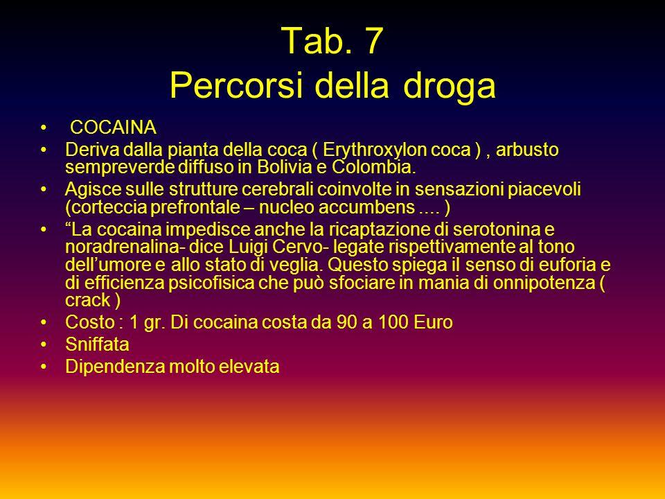 Tab, 6 Percorsi della droga EROINA Deriva dal papavero da oppio, usato fin dai tempi antichi per alleviare il dolore. Ha unazione diffusa a livello ce